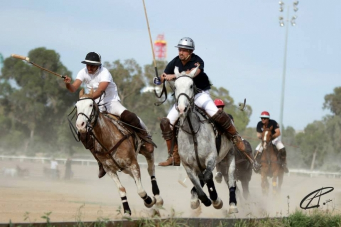 Issues between the Marsa Polo Club and the privatisation unit and the private investors have not yet been ironed out