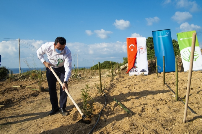 Around 1,000 trees and shrubs to be planted at Majjistral Park
