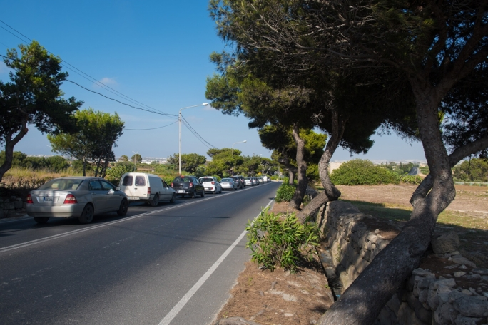 Only 15 trees to be uprooted on Rabat road as plans change again