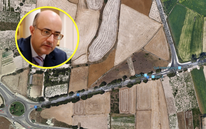 PN MP calls for Rabat road tree 'destruction' to be debated in parliamentary committee
