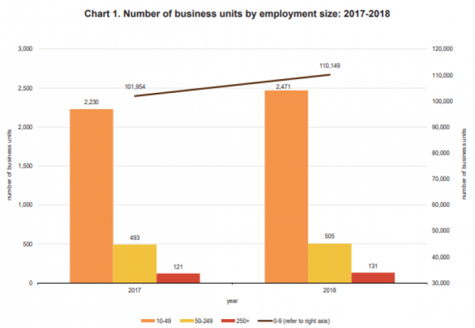 Small entities saw the greatest increase in the number of employees in 2018 compared to 2017 (Photo: National Statistics Office)