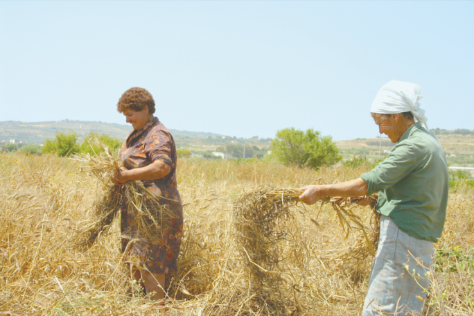 Malta with one of EU's lowest rates of female farm managers