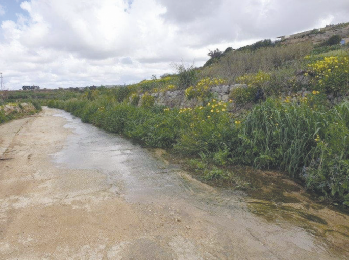 Wied Liemu is an upstream tributary that flows into the Wied il-Fiddien and Wied il-Qlejjgħa valleys