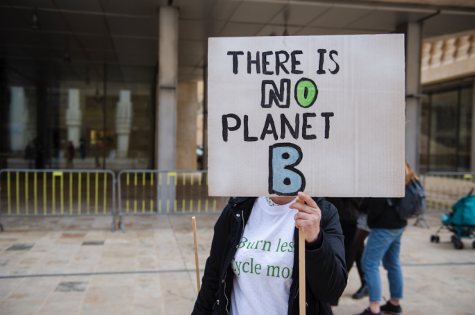 Between the 'Save the Trees' movement and the climate strikes and the protests on overdevelopment, 2019 put pressure on government to include green policies in its political arsenal