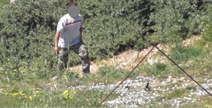 CABS films 'gang' of five turtle dove trappers in Mellieha