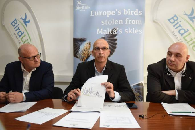 [WATCH] BirdLife Malta toying with second spring hunting referendum