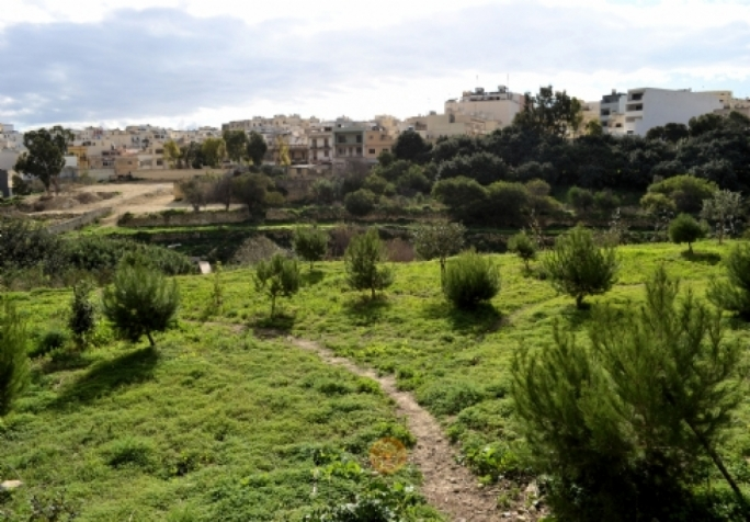 Lack of progress to transform Wied Blandun in the outskirts of Fgura into a family park was one of the concerns raised by mayors during a special Cabinet meeting